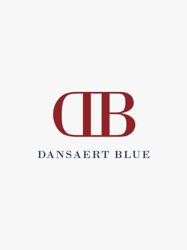 Dansaert blue logo